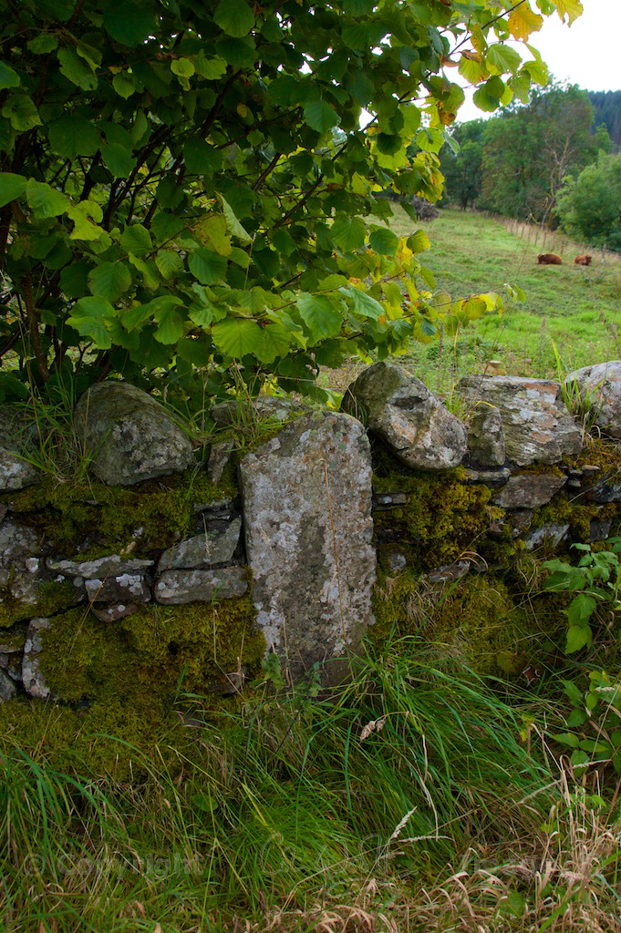 Grave Etive and Orchy - Jo 52