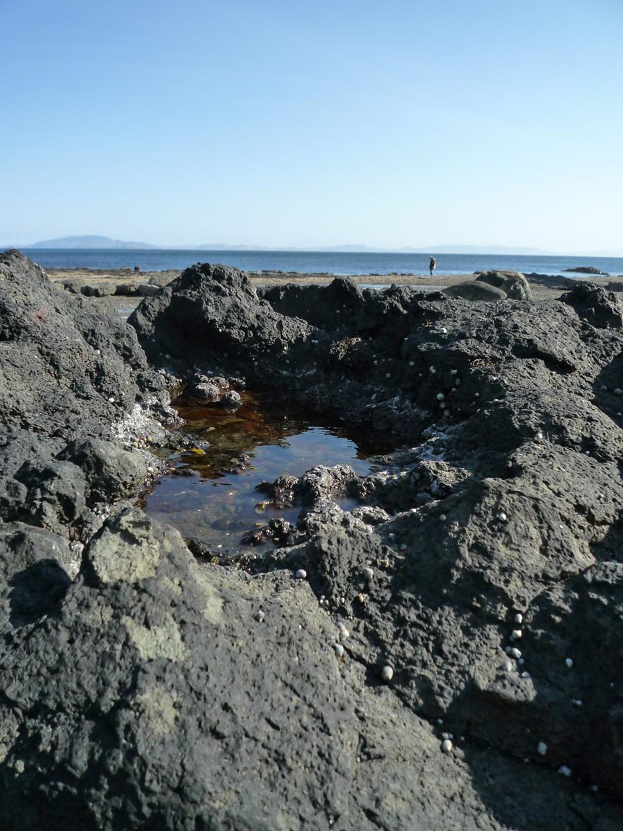 Carsaig beach, Mull 51