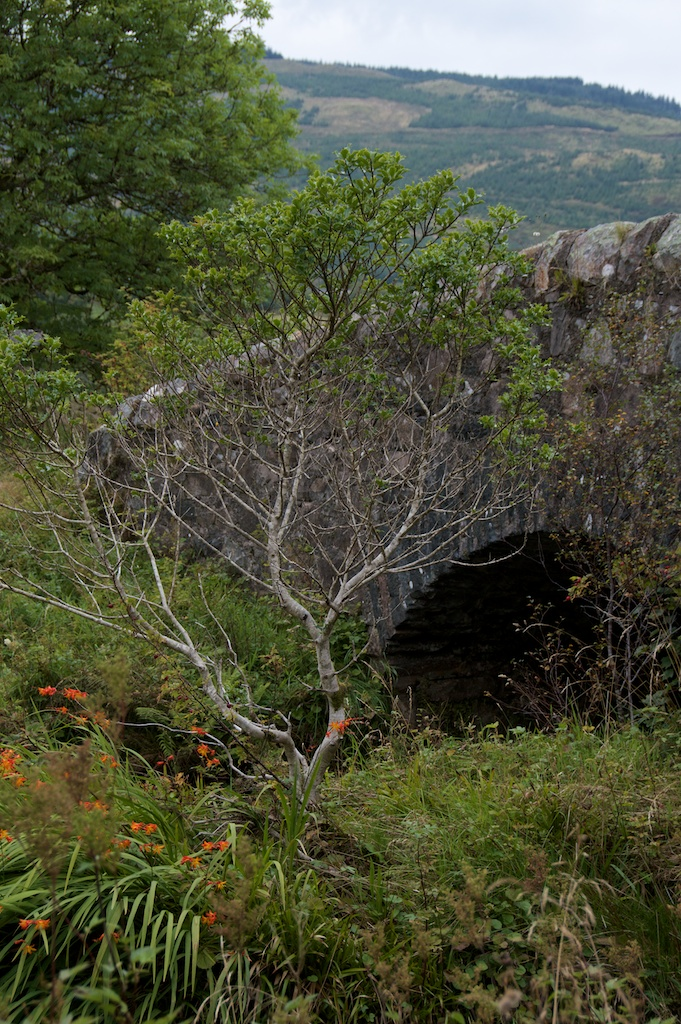 Brenchoille Bridge (4)