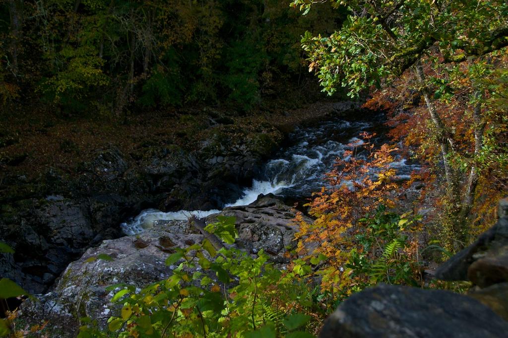 Killiecrankie Autumn (3)
