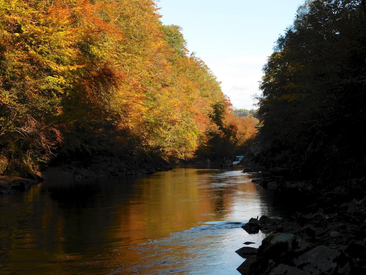 Killiecrankie autumn (8)