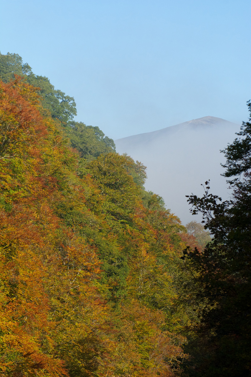 Killiecrankie autumn (10)