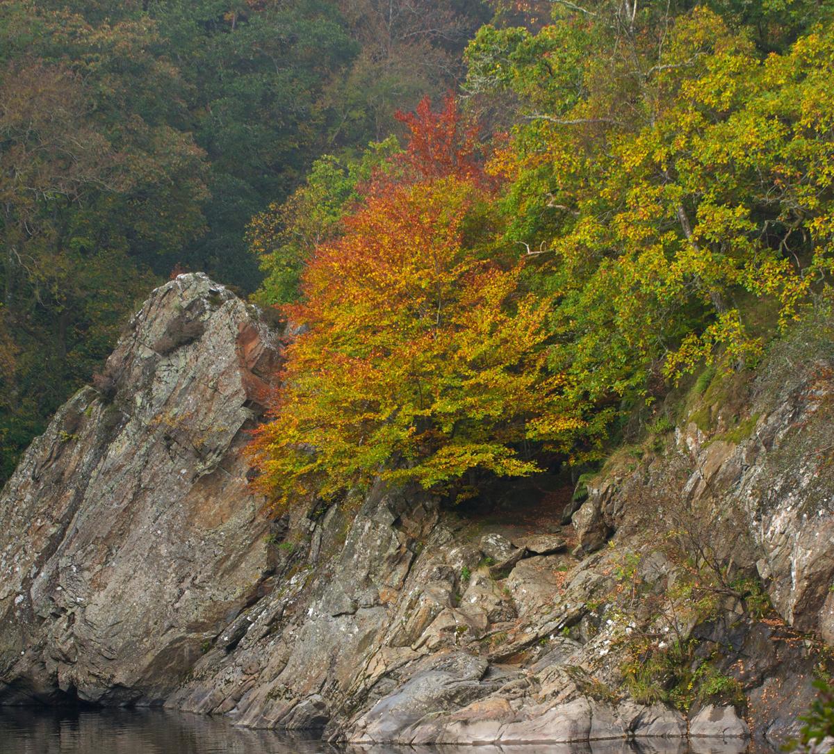 Killiecrankie autumn (5)
