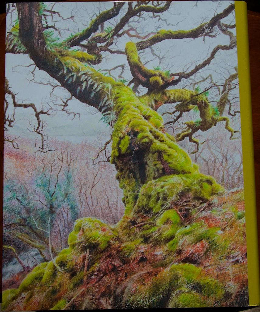 Back cover, illustration by Ben Averis
