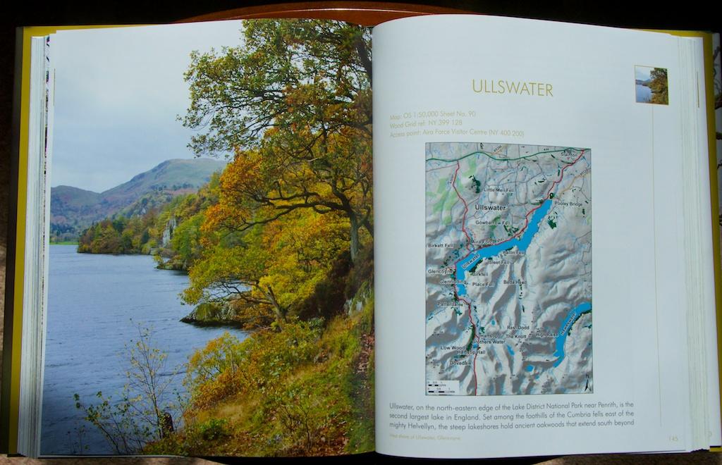 Rainforests book 4