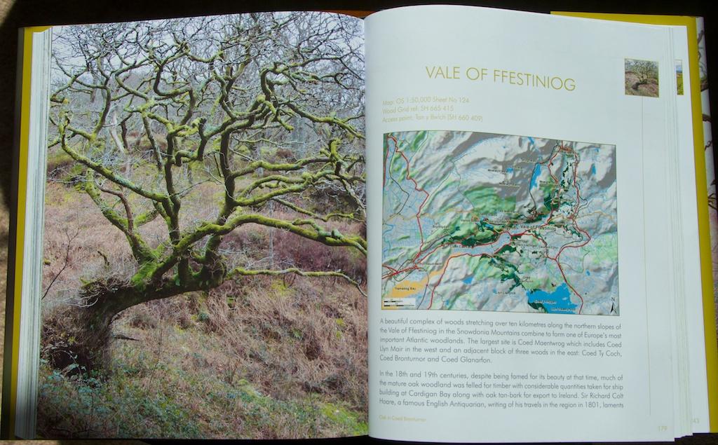 Rainforests book 6